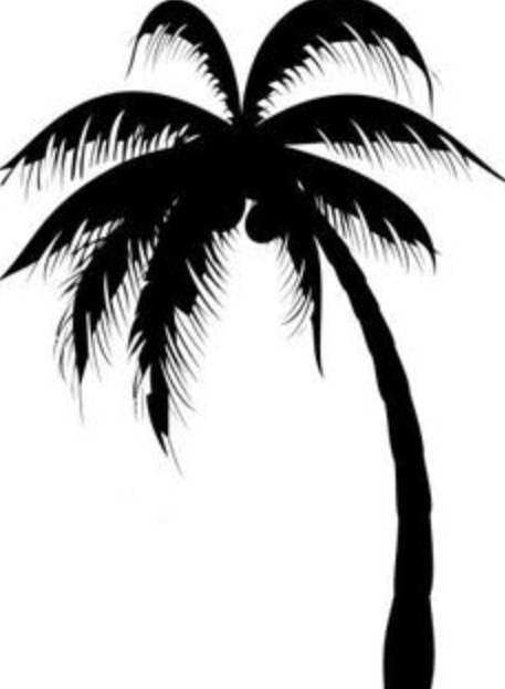 457x623 Awesome Black Silhouette Palm Tree Tattoo Design