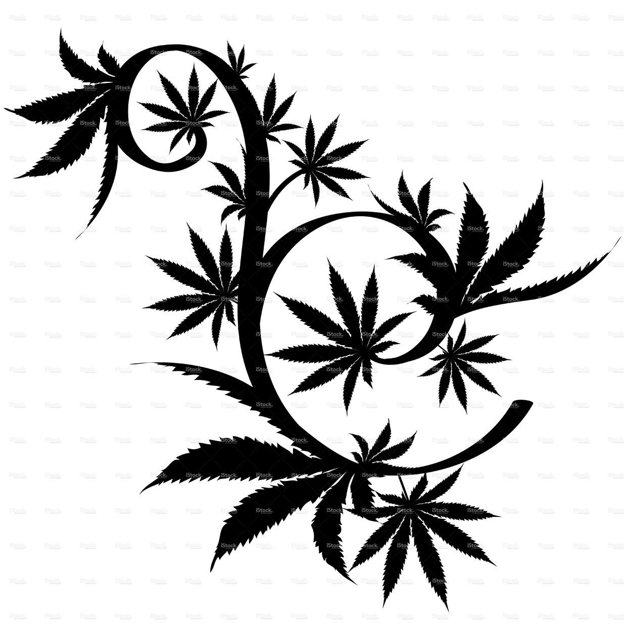 1235x1235 Black And White Vector Cannabis Leaf Composition Background