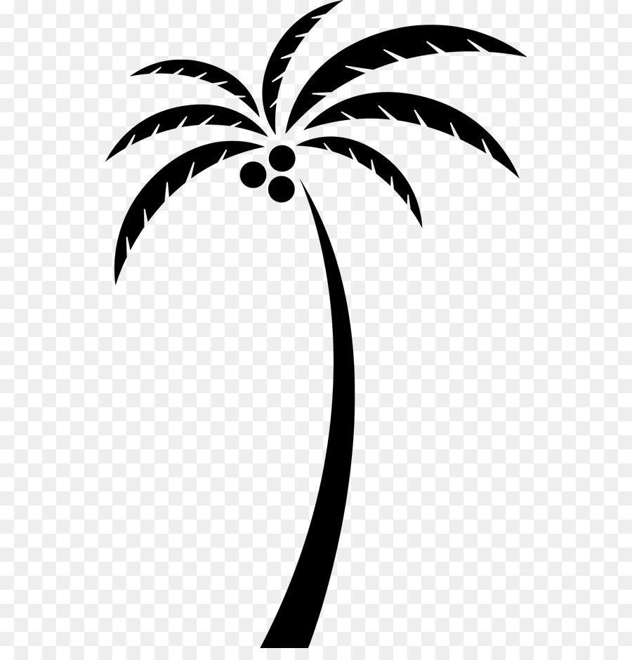 900x940 Coconut Arecaceae Tree Clip Art