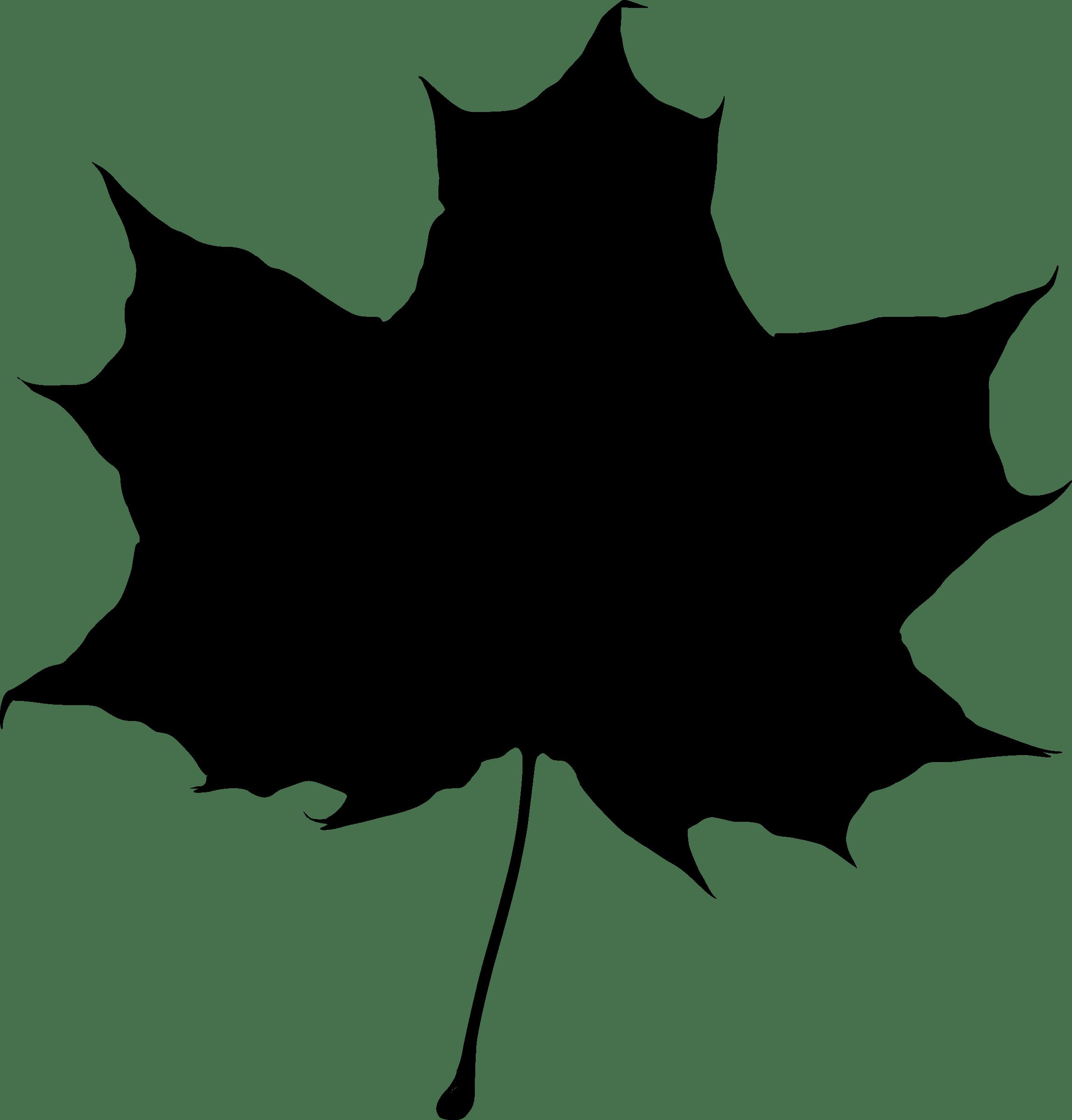 2296x2400 Maple Leaf Silhouette Transparent Png