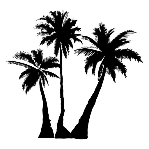512x512 Palm Palm Tree Tree Silhouette
