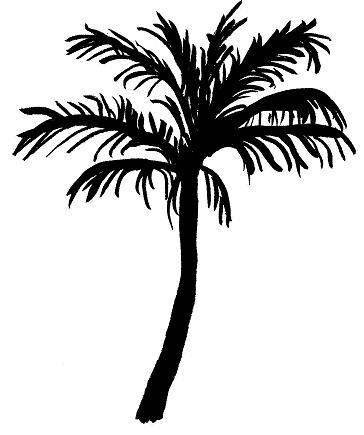 364x435 Tree Silhouette Palm