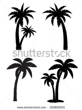 350x470 Drawn Palm Tree Vector