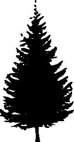 153x293 Tree Silhouette Clip Art Free Vector 4vector