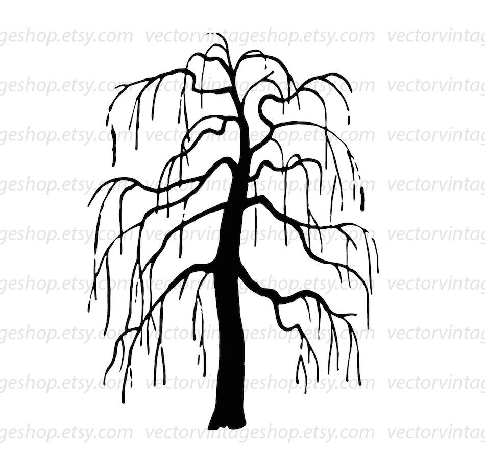 950x924 Weeping Willow Tree Vector Clipart, Bare Tree Silhouette Clip Art