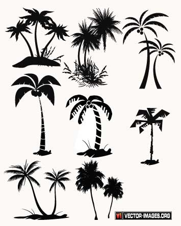 355x444 Palm Tree Silhouettes Vector Free, Vector Graphics