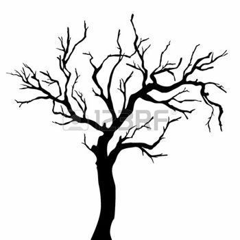 350x350 Tree Silhouettes Photo Drawings Amp Photos Tree