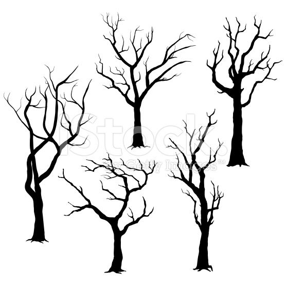 556x556 A Vector Illustration Of Tree Silhouettes Illustration. Tree