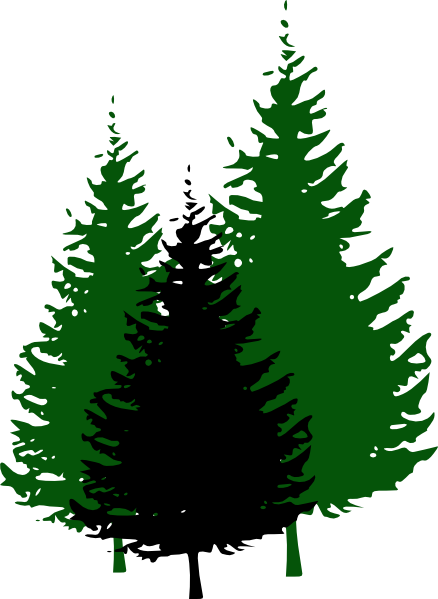 438x599 Evergreen Tree Silhouette Clip Art Free Vector For Free Download