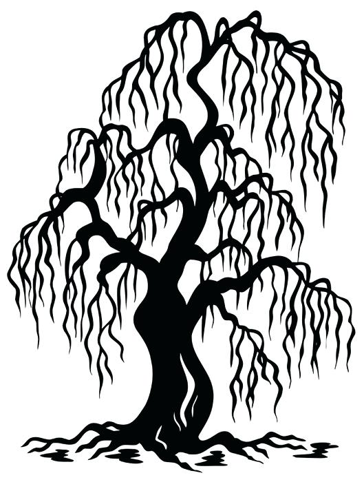529x700 Tree Branch Silhouette Wall Decal