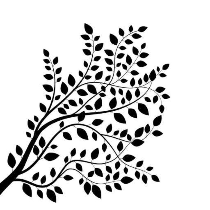 700x700 Branch Tree Silhouette Isolated On White Wall Decal We