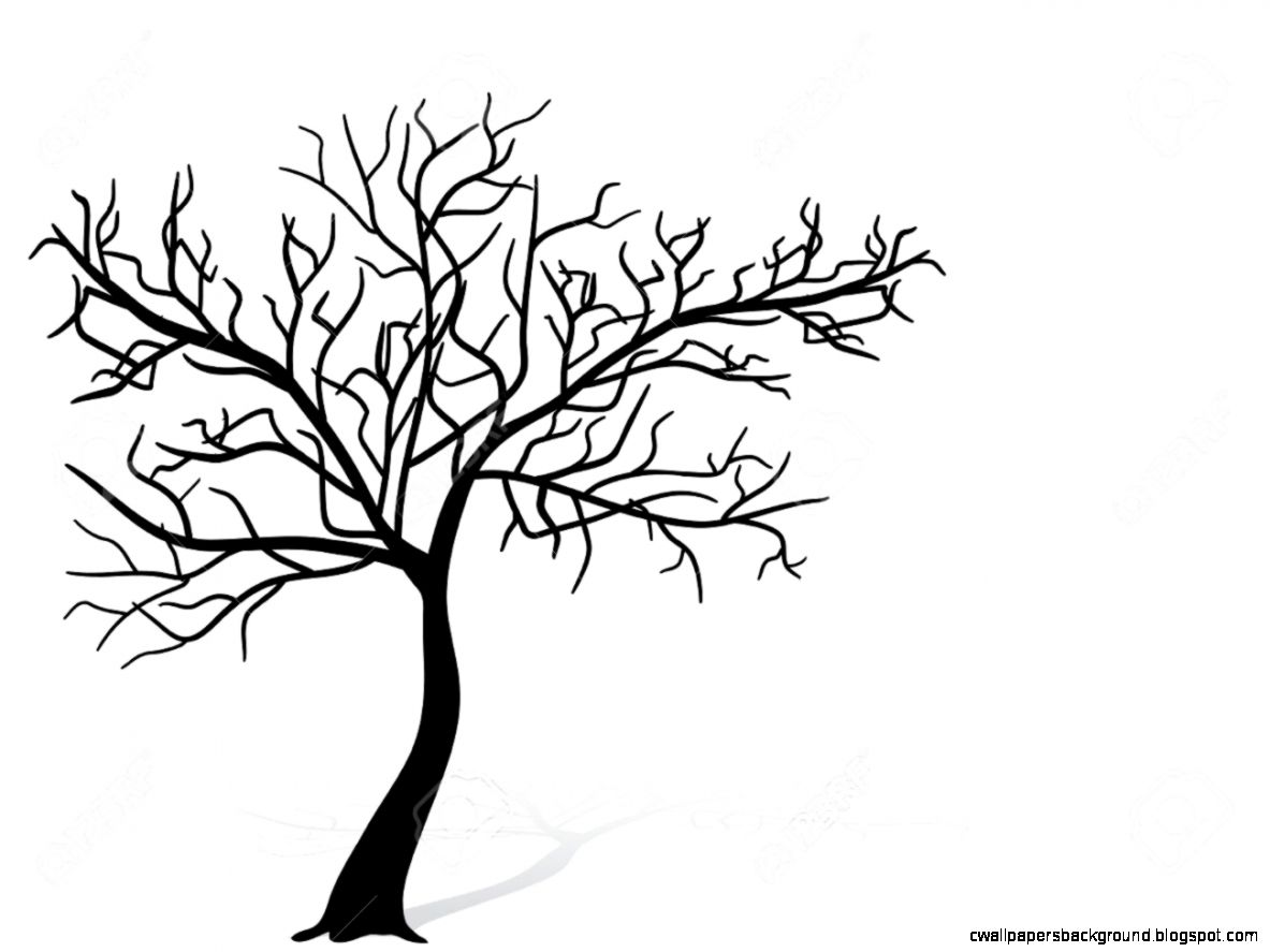 Tree Silhouette Wallpaper At Getdrawings Com Free For