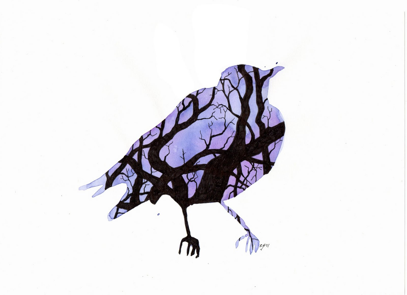 1600x1162 Silhouette With Birds