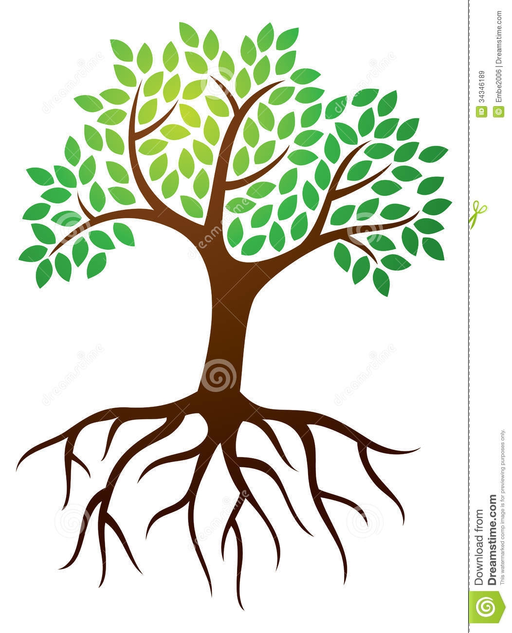 1052x1300 Clipart Of Trees With Roots