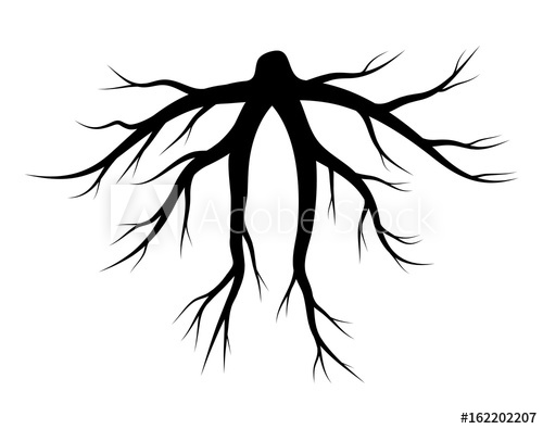 500x395 Root Silhouette Vector Symbol Icon Design.
