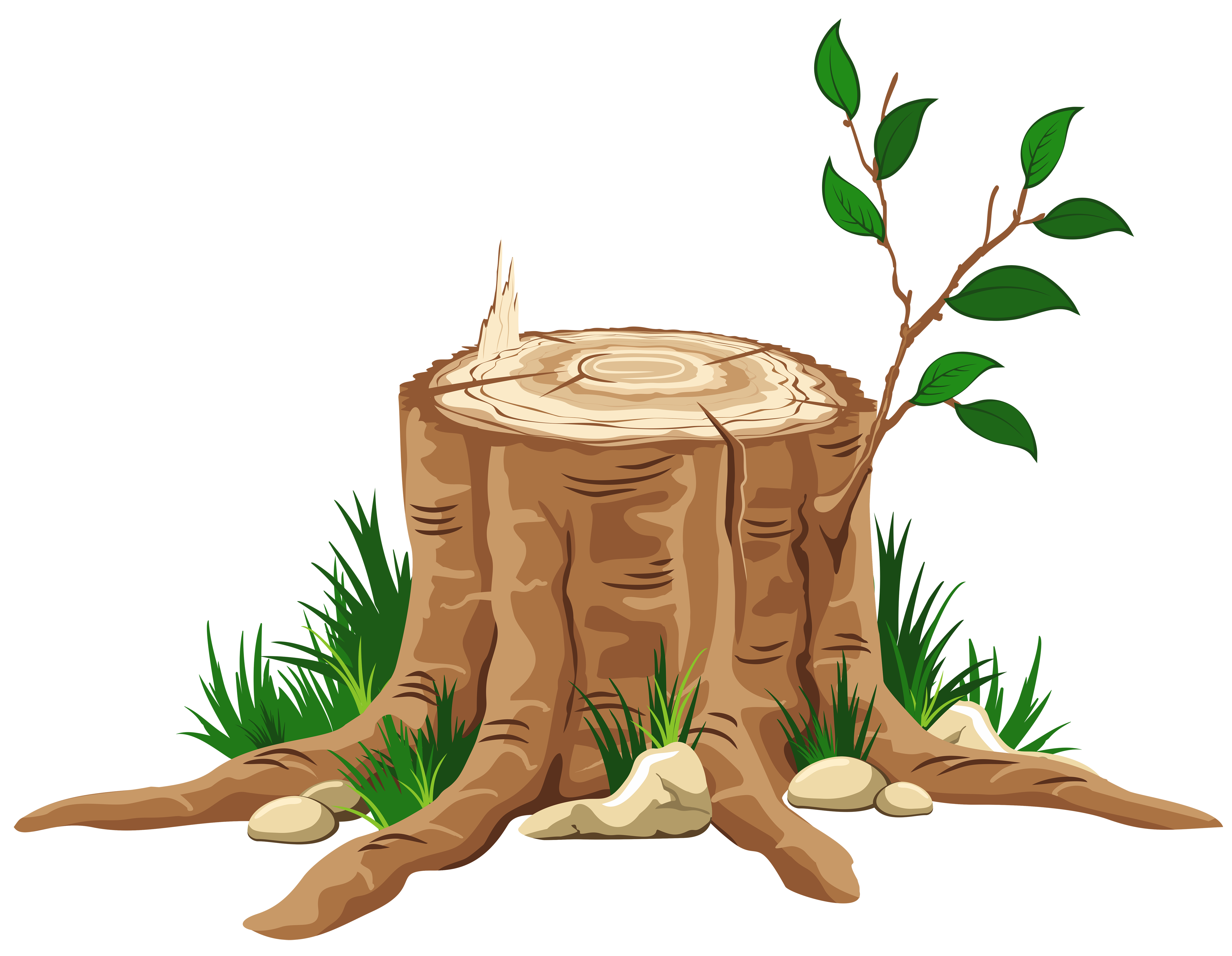5000x3879 Transparent Tree Stump Png Clipartu200b Gallery Yopriceville