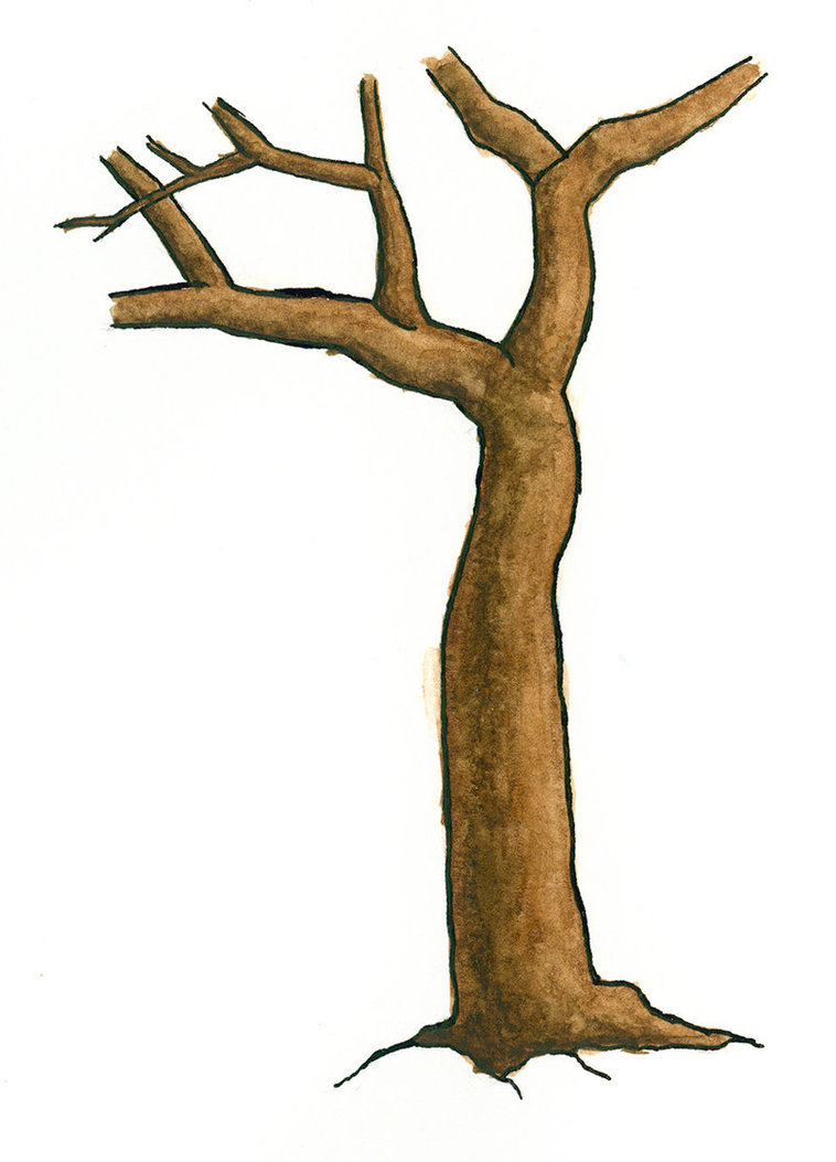 758x1053 Tree Trunk And Branches Clipart