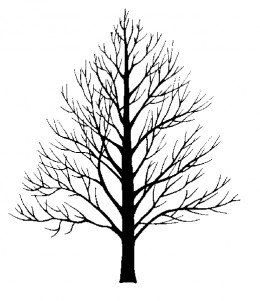 260x301 14 Best Trees Images On Silhouette, Sketches And Tree