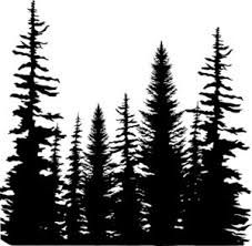227x222 Pine Tree Forest Silhouette