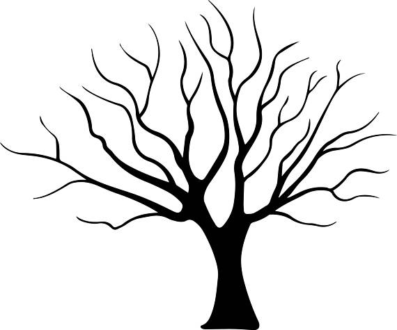 570x475 Tree Wood Arbol Silhouette Exotic Trunk Forest Organic
