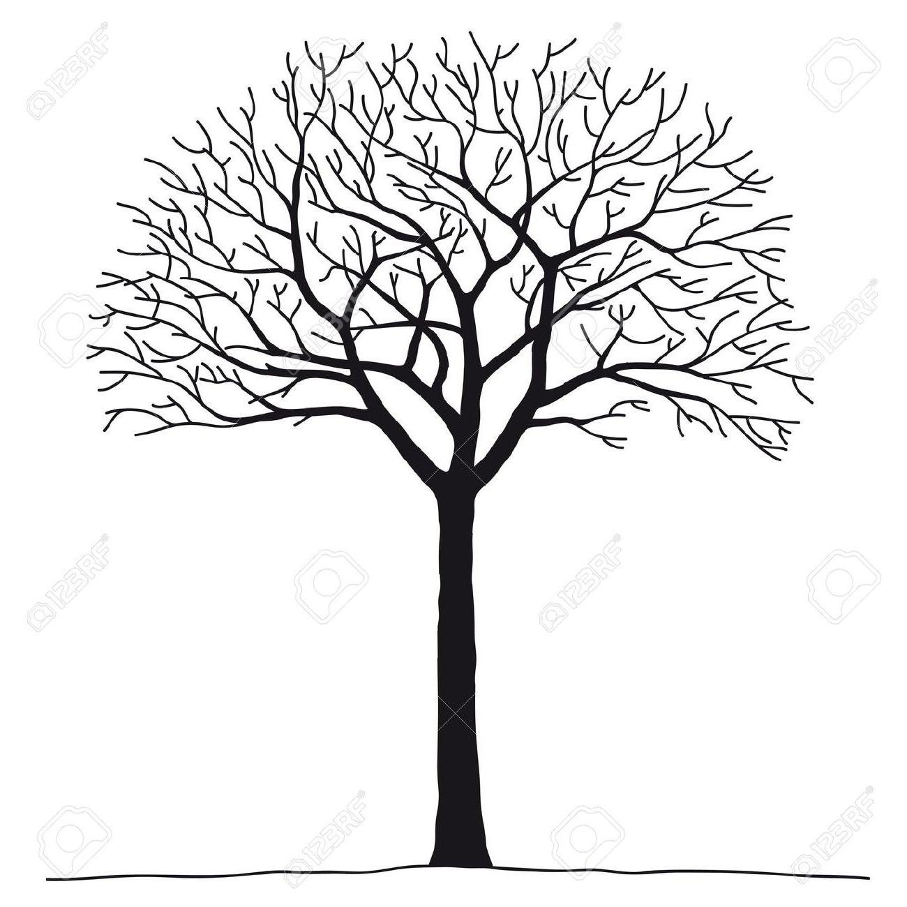 1300x1300 Hd Best Bare Tree Stock Vector Silhouette Design Image