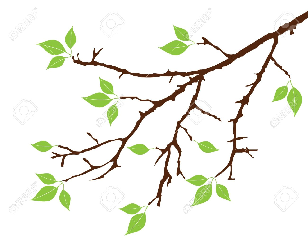 1300x1036 Tree Leaves And Twigs Clipart