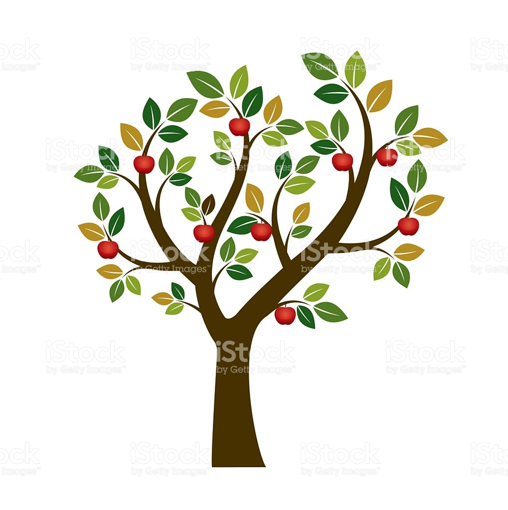1019x1024 Roots Clipart Fruitful Tree 3864116