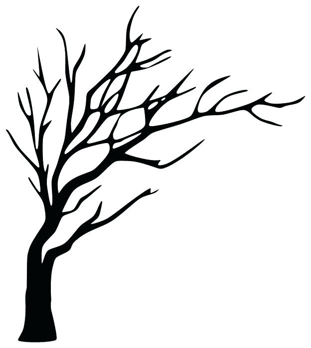 624x698 Tree Branches Outline Clip Art Of With Roots And Outline Tree
