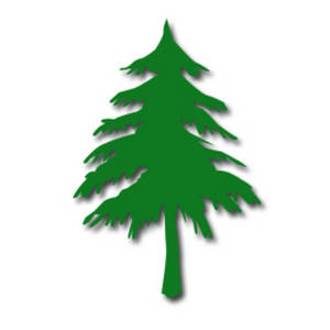 300x300 Clipart Evergreen Tree Silhouette Collection