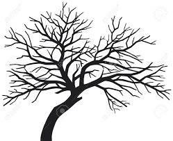 249x203 Image Result For Tree Silhouette Tree Silhouettes, Vectors