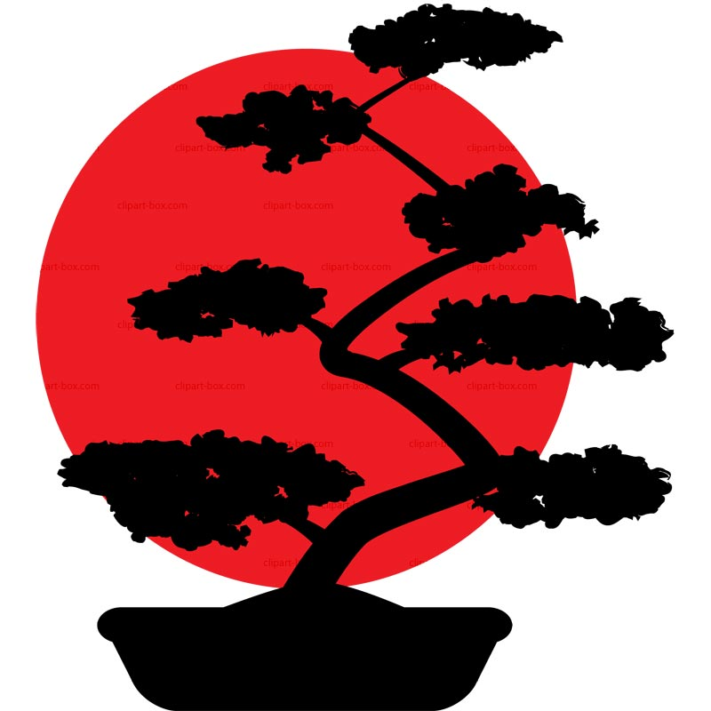 800x800 Image Of Bonsai Tree Clipart