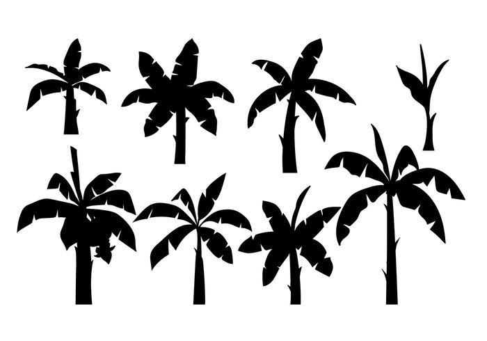 700x490 Banana Tree Silhouette Vector