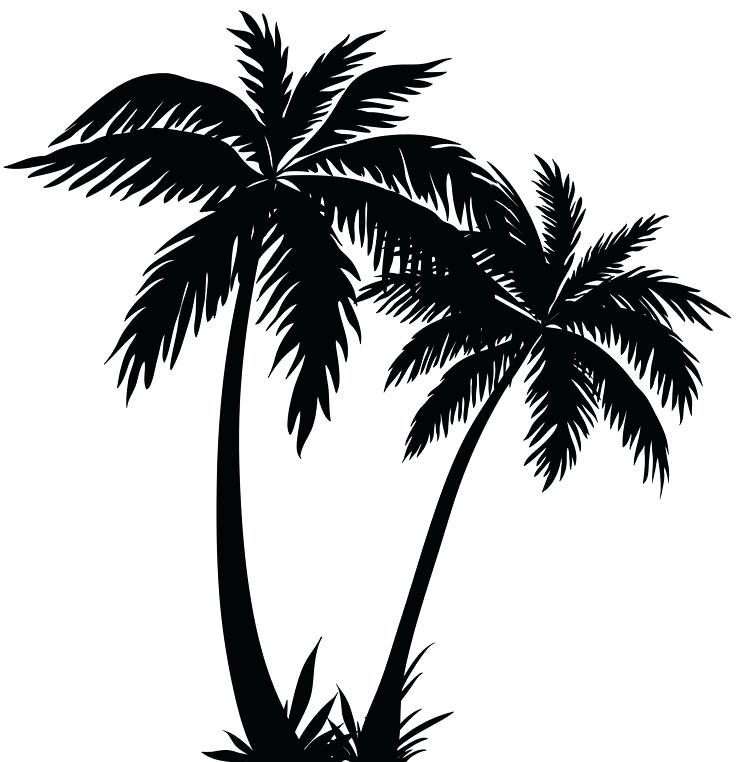 736x762 Destiny Palm Tree Outline One Palm Tree Outline Black Coconut