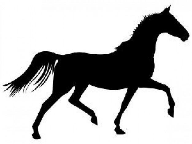 626x469 Trotting Horse Photo Free Download