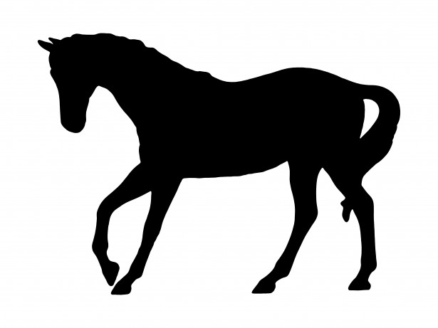 615x461 Trotting Horse Silhouette Free Stock Photo