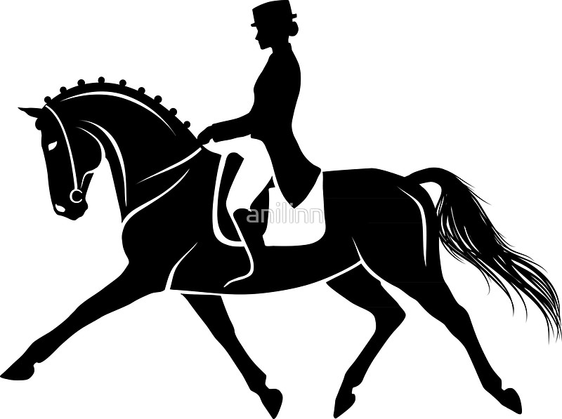 800x597 Detailed Silhouette Of A Dressage Horse Performing Extended Trot