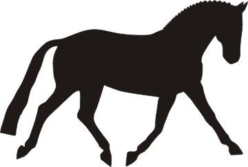 360x242 Dressage Horse Silhouette Dressage Pony Horse Silhouette Decal