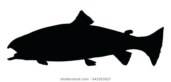 582x280 Trout Silhouette Jumping Trout Silhouette