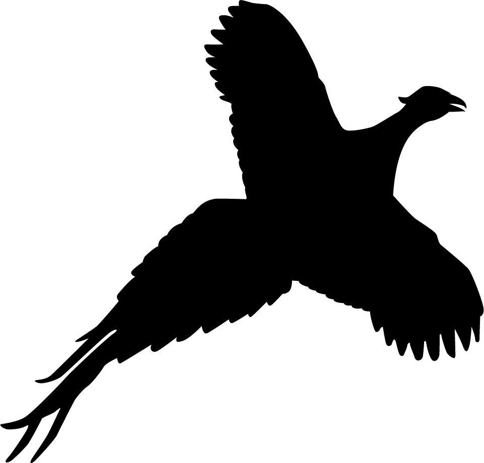 961x920 Pheasant Silhouette