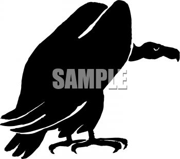 350x309 Royalty Free Clipart Image Vulture Or Buzzard Silhouette