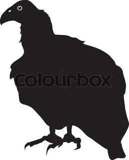 258x320 Silhouette Of Vulture Stock Vector Colourbox