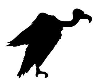 320x274 Vulture Silhouette Decal Sticker