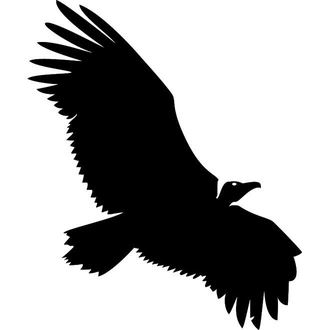 660x660 Vulture Silhouette Free Vector Vulture