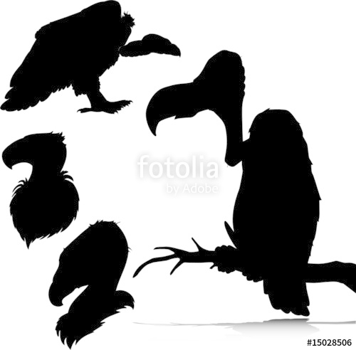 500x492 Vulture Vector Silhouettes Stock Image And Royalty Free Vector