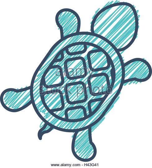 489x540 Turtle Clip Art Stock Photos Amp Turtle Clip Art Stock Images