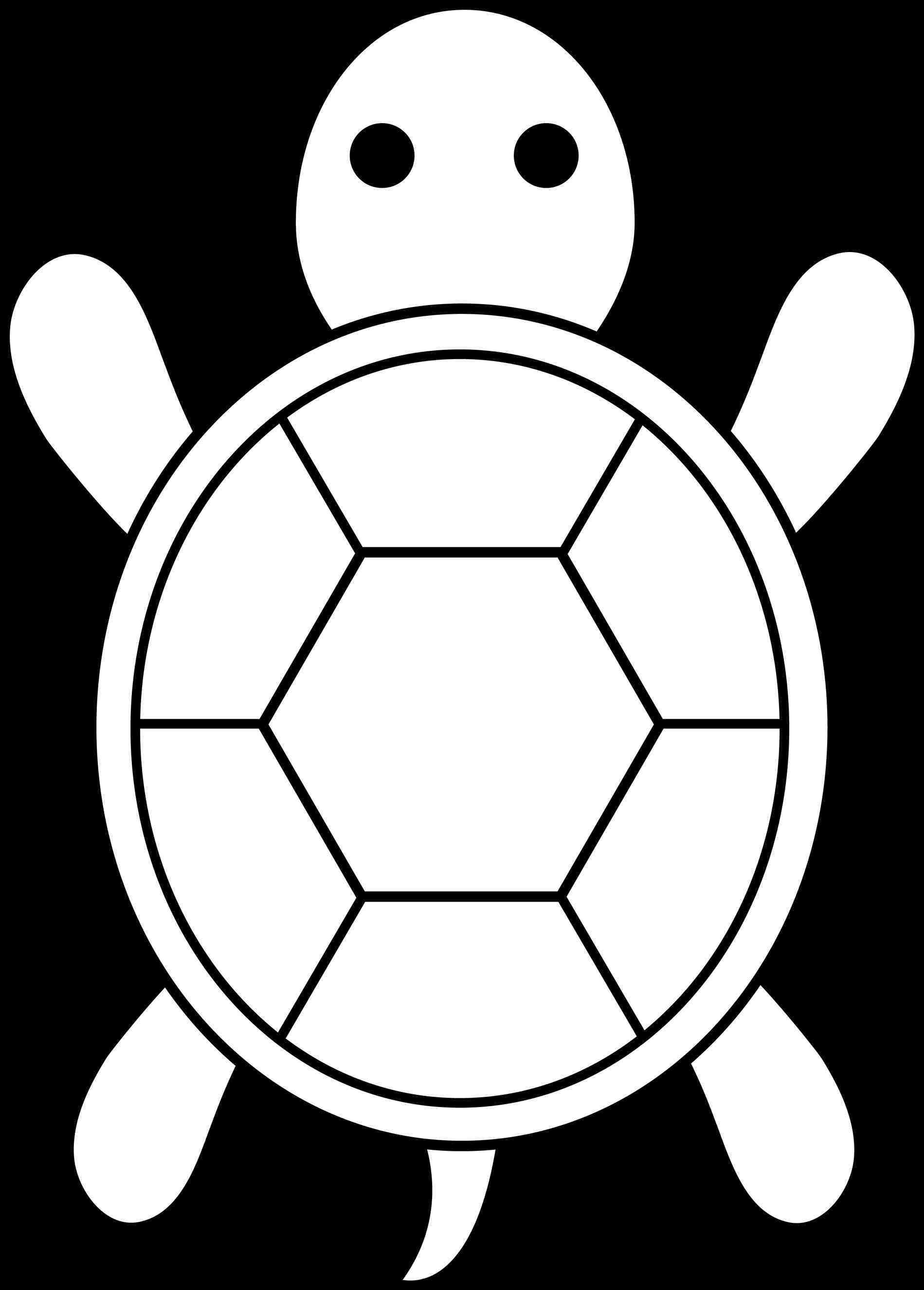 Turtle Shell Silhouette at GetDrawings | Free download