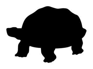 320x240 Turtle Silhouette 2 Decal Sticker