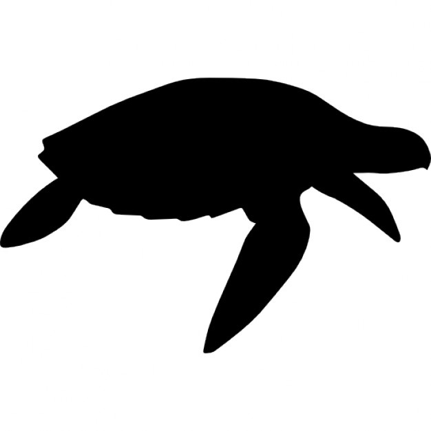 626x626 Turtle Silhouette Vectors, Photos And Psd Files Free Download