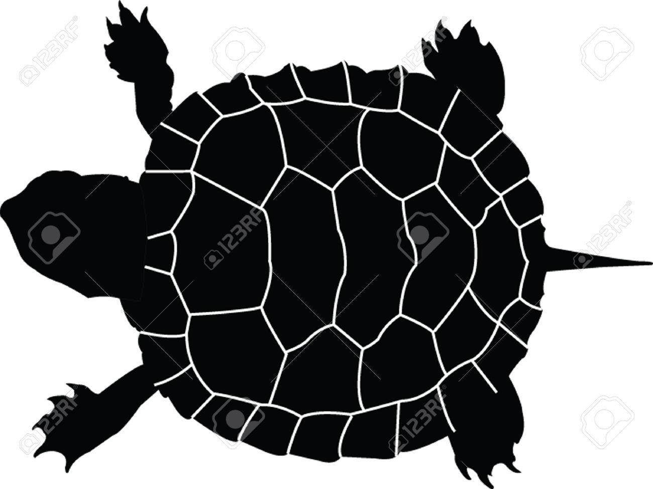 1300x974 Best Turtle Silhouette