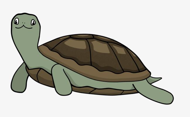 650x400 Small Hand Painted Turtle, Tortoise, Little Turtle, Cute Turtle